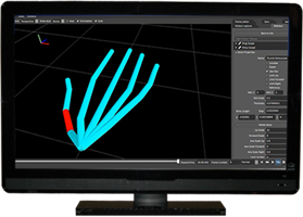 Synertial Kinematics Editing